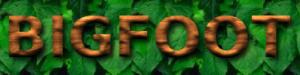 Bigfoot logo
